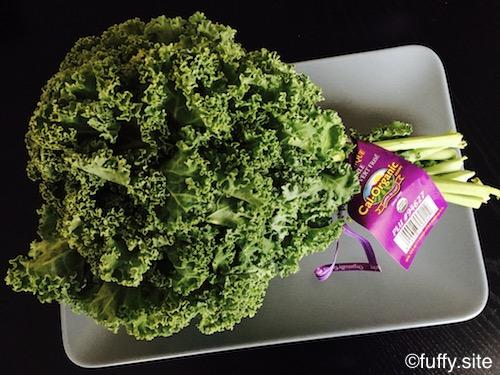 ケール 野菜
