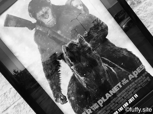 猿の惑星2017 Planet of the Apes
