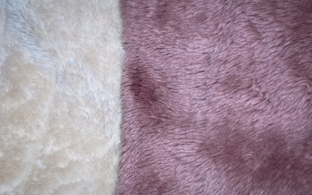 Two Colour Fur