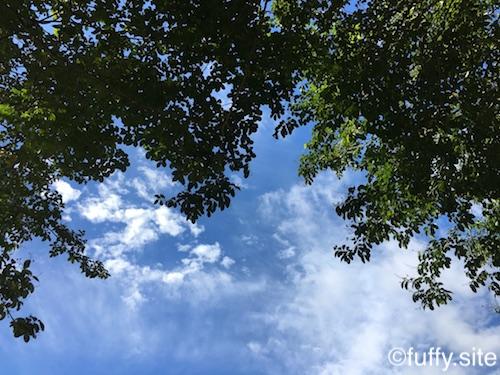 October Sky 空