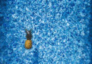 Pineapple Navy Blue