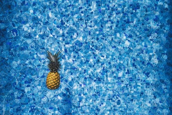 Pineapple Navy Blue