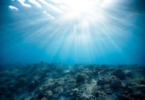 under water ocean