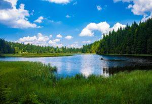 Lake Green