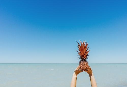 sea pineapple