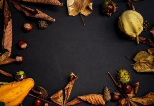 Autumn Pumpkin Fruit