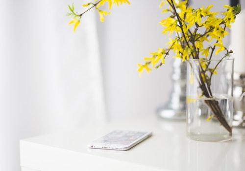desk iPhone flower