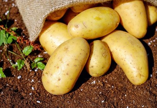 potato じゃがいも